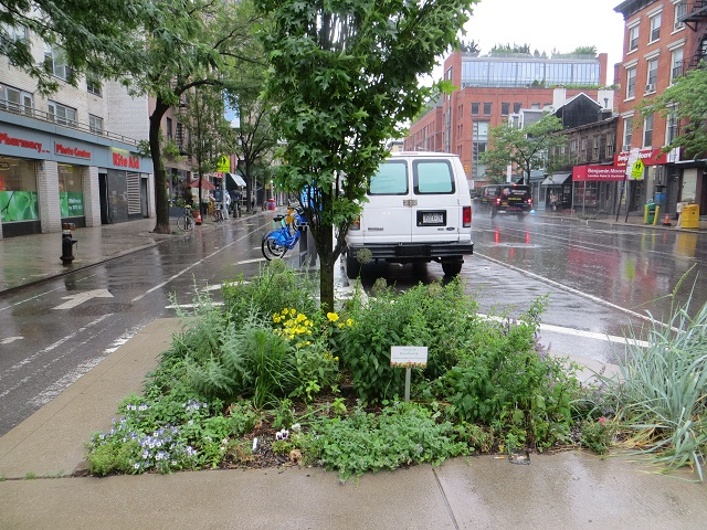 Flower bed in traffic island between separated bike lane and traffic