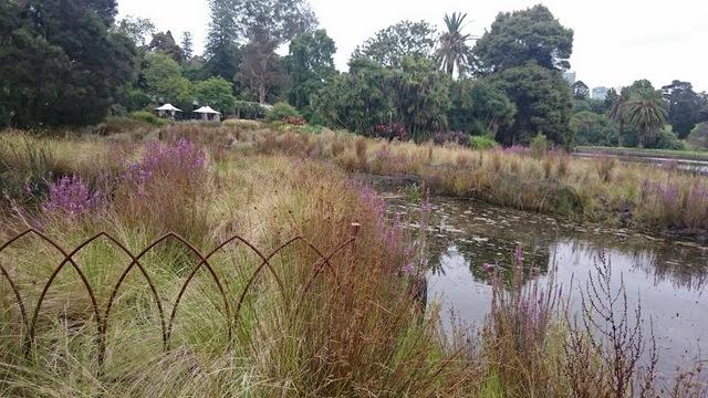 1-rbg wetlands