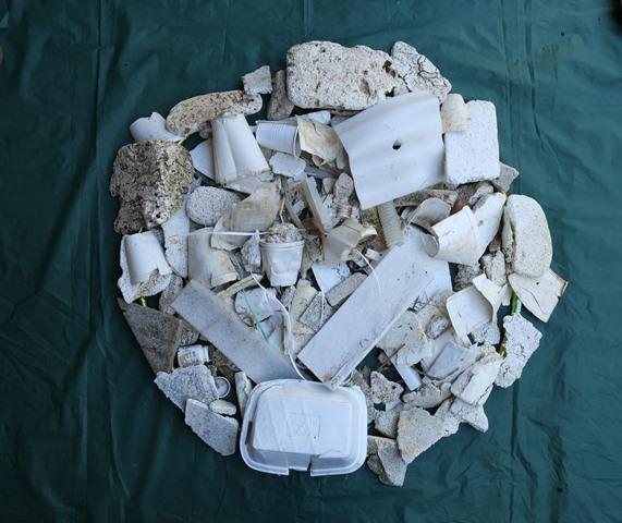 polystyrene-cropped-w